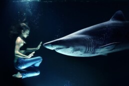 woman floating in water holding up hand to stop a shark nosing forward